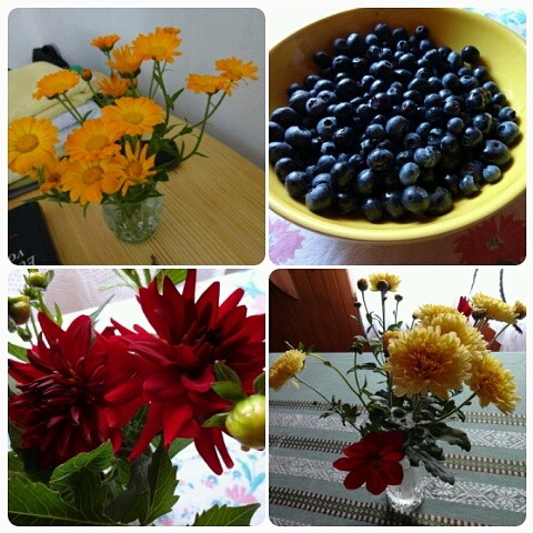 Flowers and fruit to welcome us.