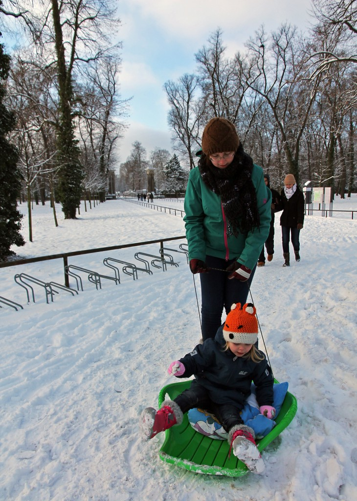 Sleighing into the park…