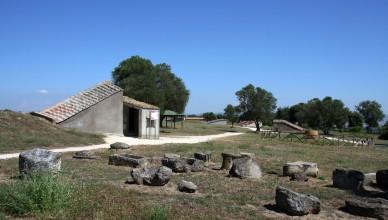 Tarquinia1