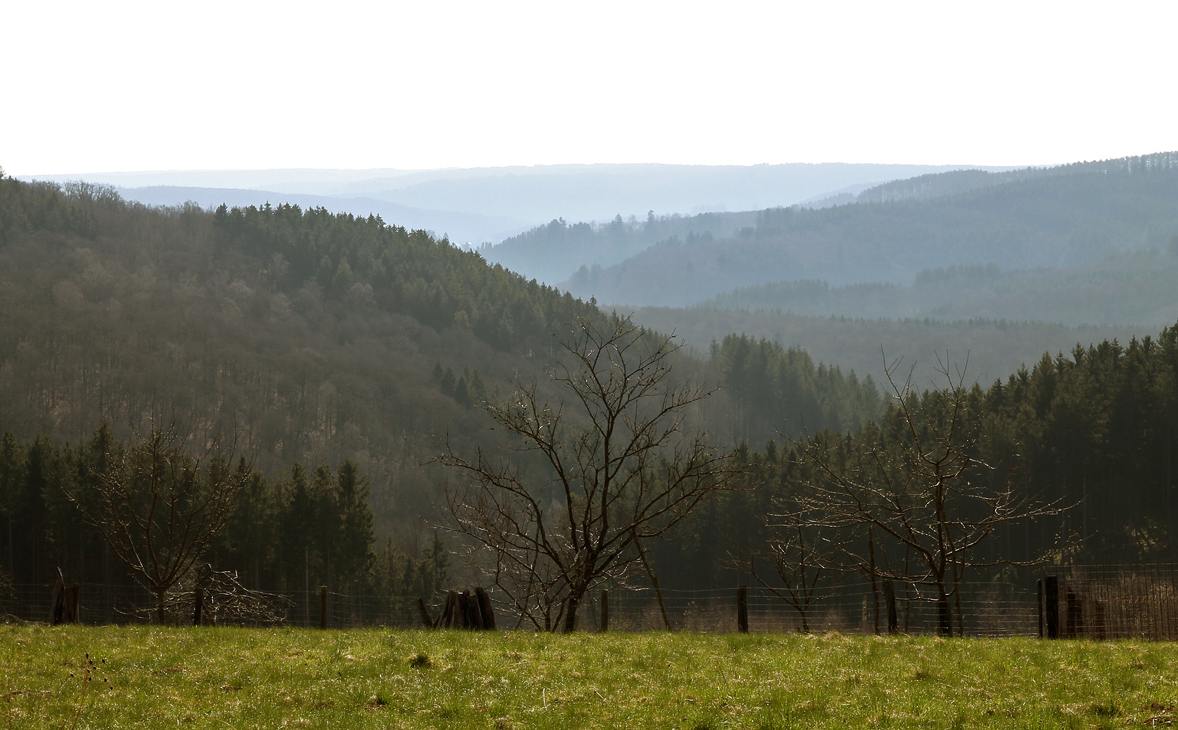 The Belgian Ardennes: hilly and forested.