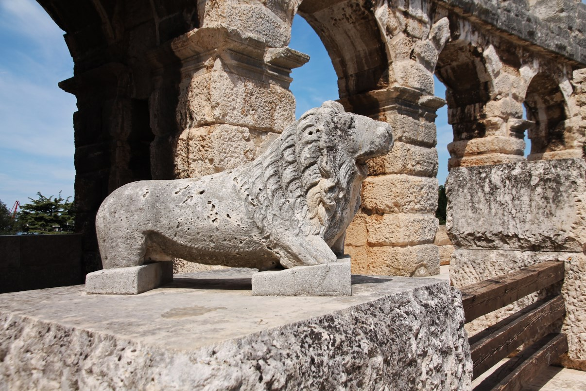 I really liked this small lion statue...