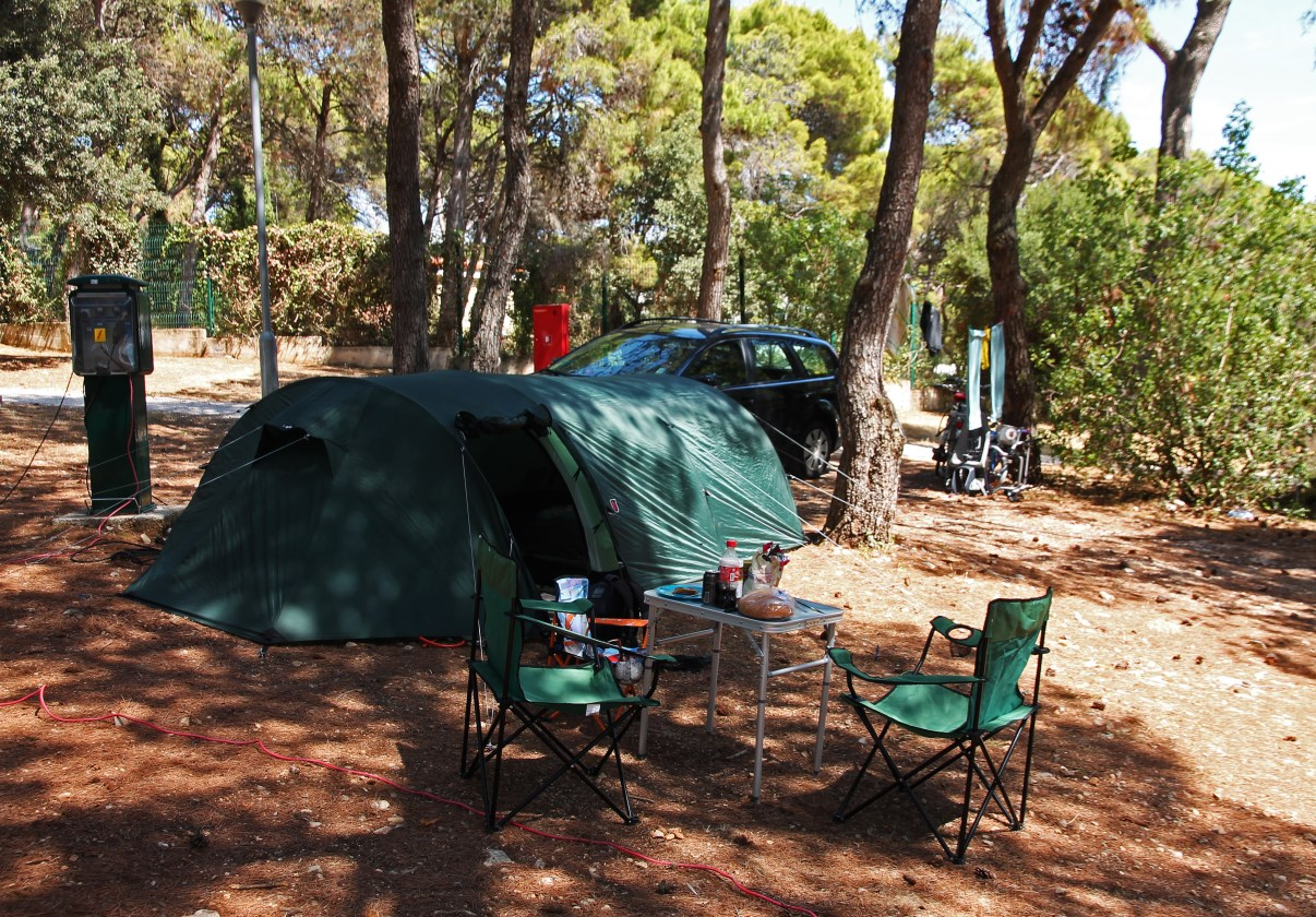 Our spot under the pine trees.
