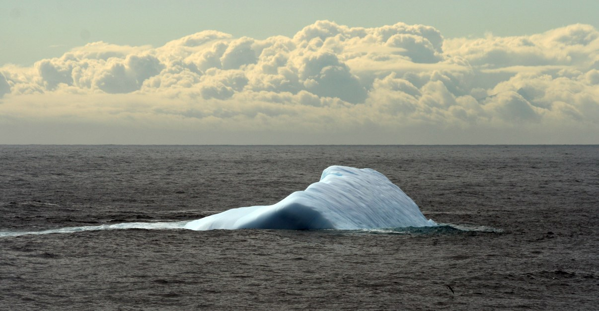 Floating ice near King George Island.