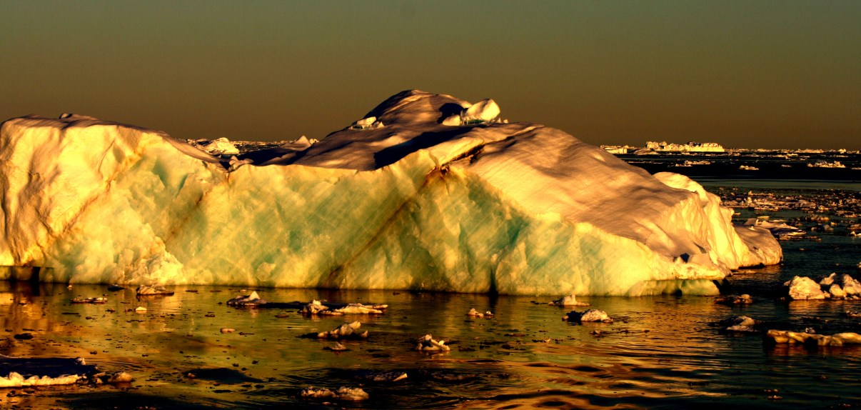 Sea ice in the evening sun.