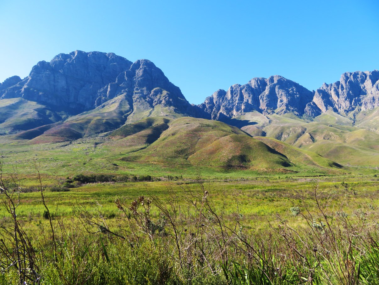 The Jonkershoek Mountains are so beautiful!