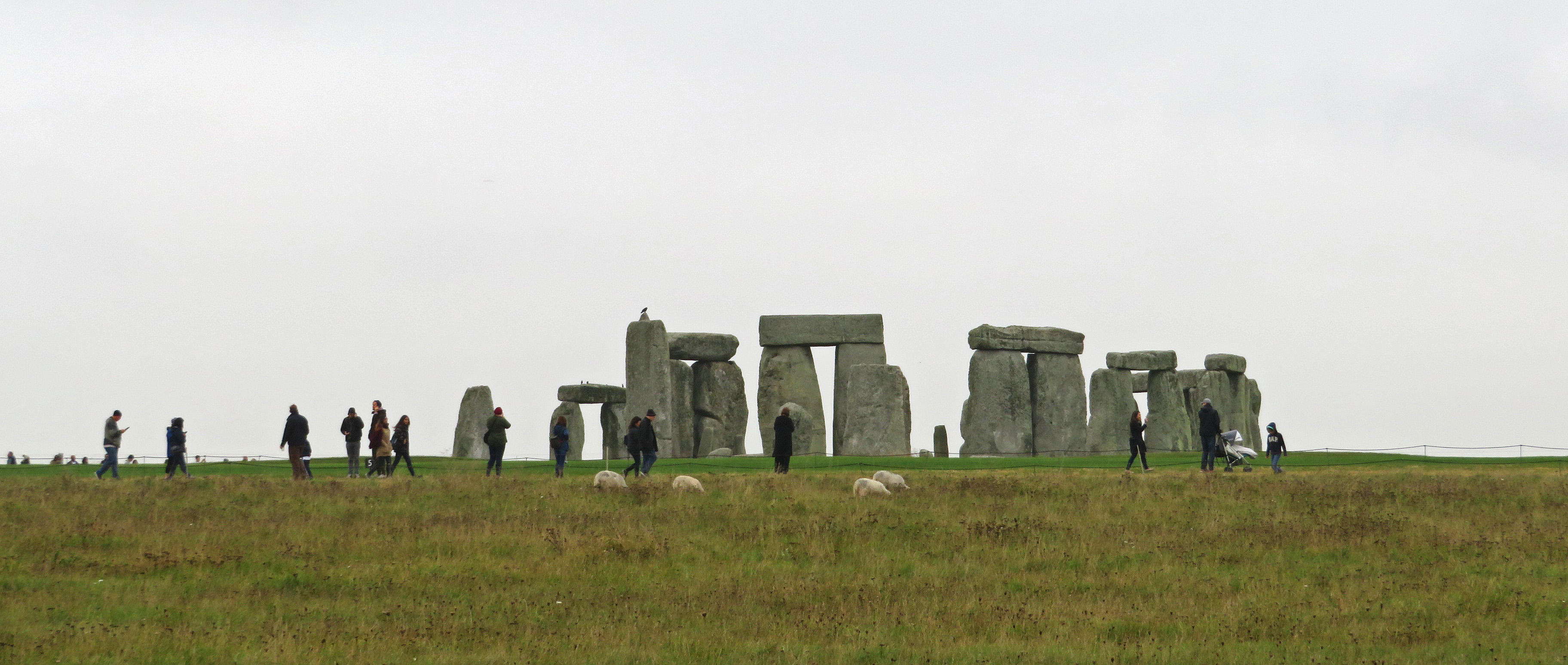Stonehenge, from the car.