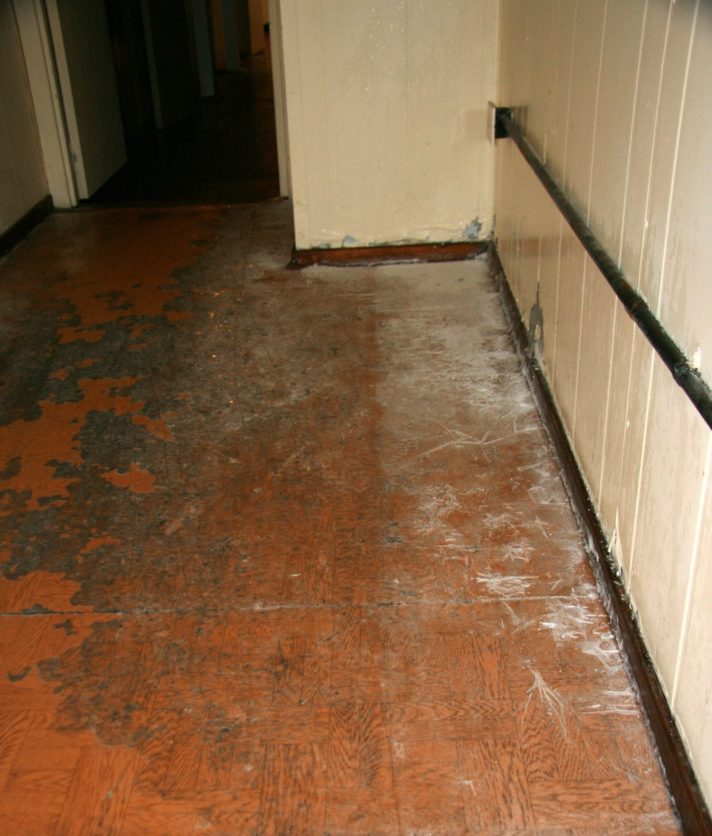 Yes, that's ice in the corner of our main corridor...
